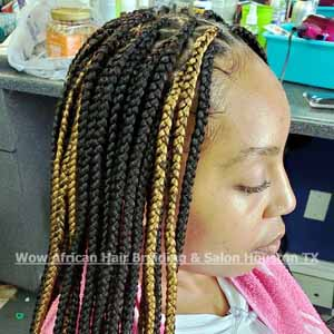 Knotless Triangle Braids Houston TX
